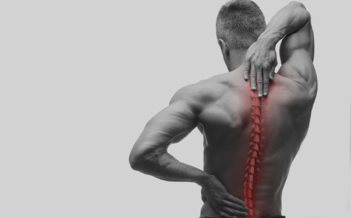 Your Spine is the Backbone of the Health
